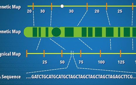 dna Crossing over, gene mapping and recombination of chromosome