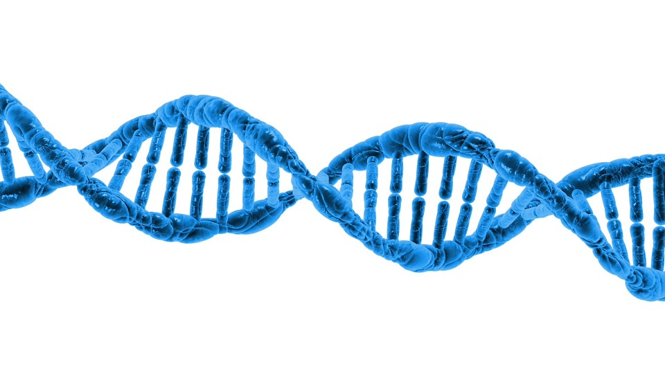 12 std biology Biotechnology Introduction - Recombinant DNA technology