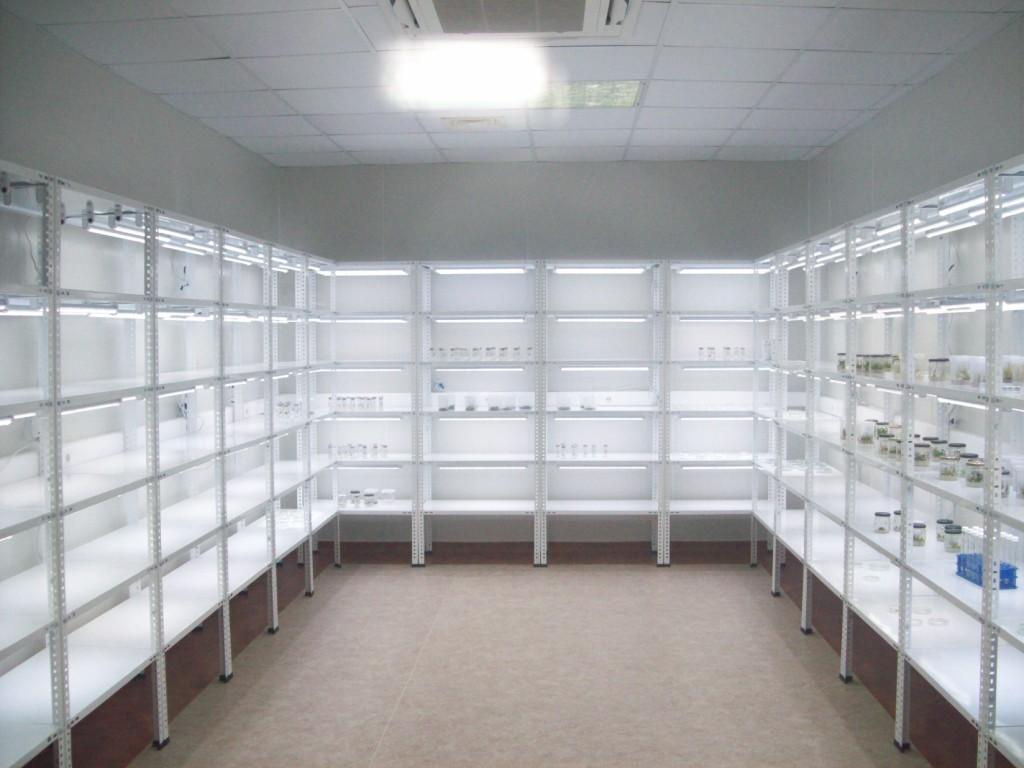 techniques of plant tissue culture